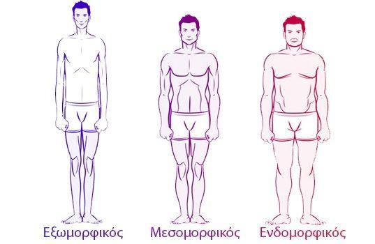 Οι 3 σωματότυποι